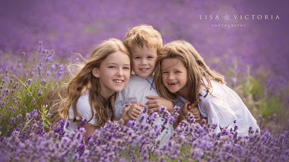 lavender family photo shoot