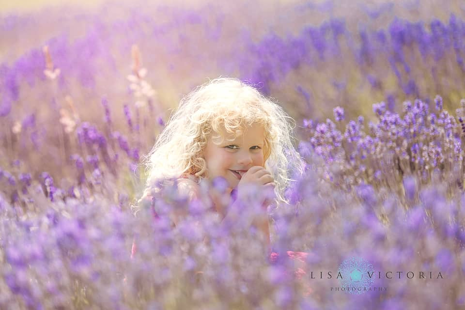 Lavender photo shoot family Bristol
