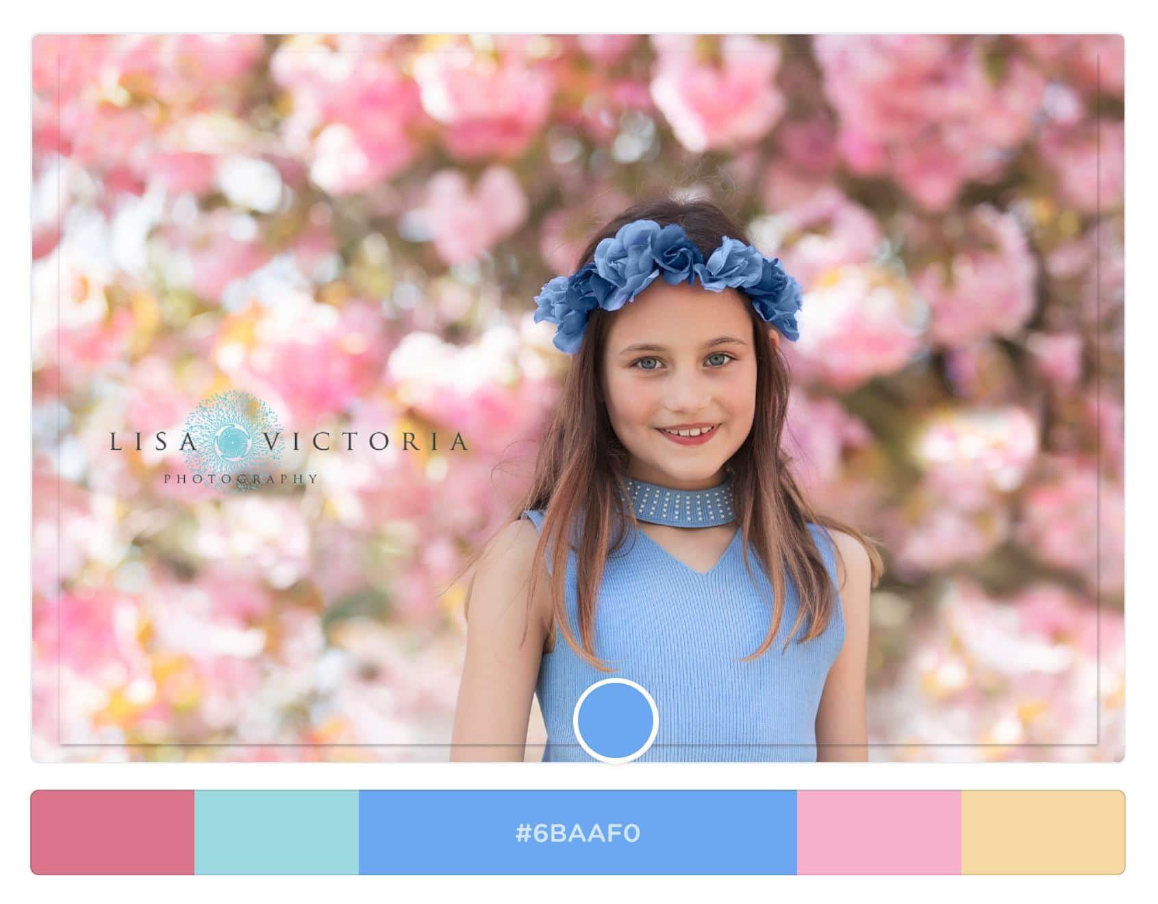 Blossom Portrait Blue Colour Scheme