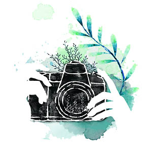 camera photography course