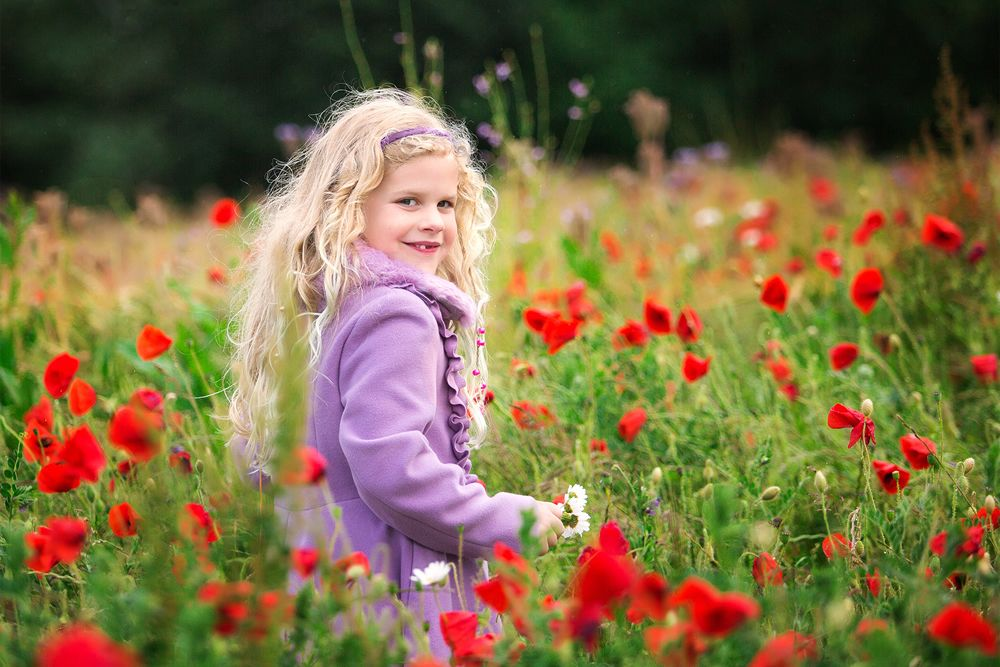 child poppy field photoshoot