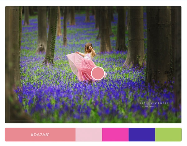 bluebell spring photo shoot bristol
