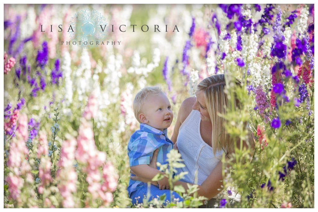 professional photoshoot in confetti flower fields