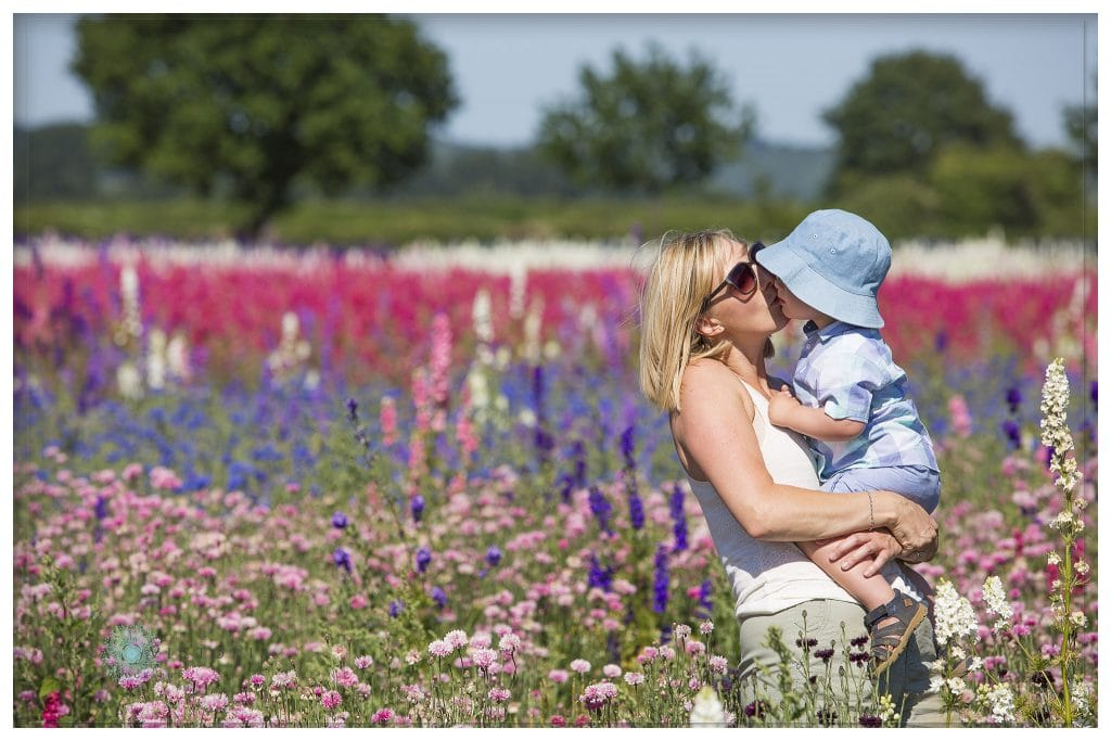 family portrait photographer in the flower fields