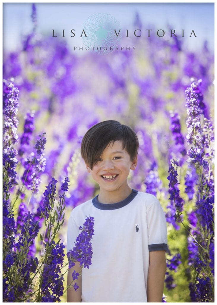 Confetti Flower Fields Photography