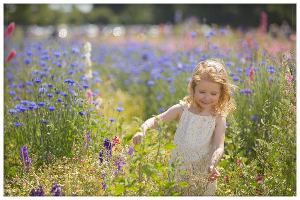 little girl in confetti flower field pershore wick
