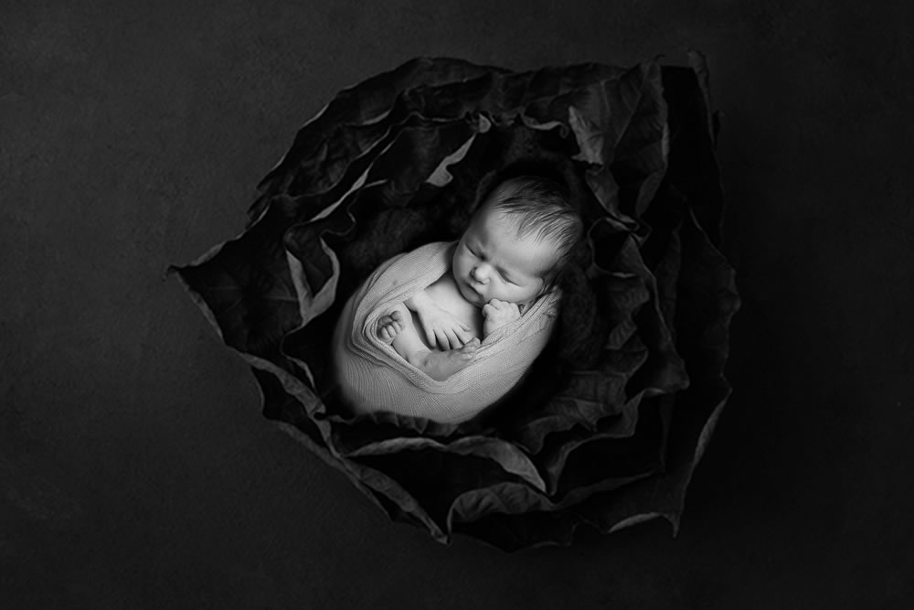 Newborn Photographer Bristol