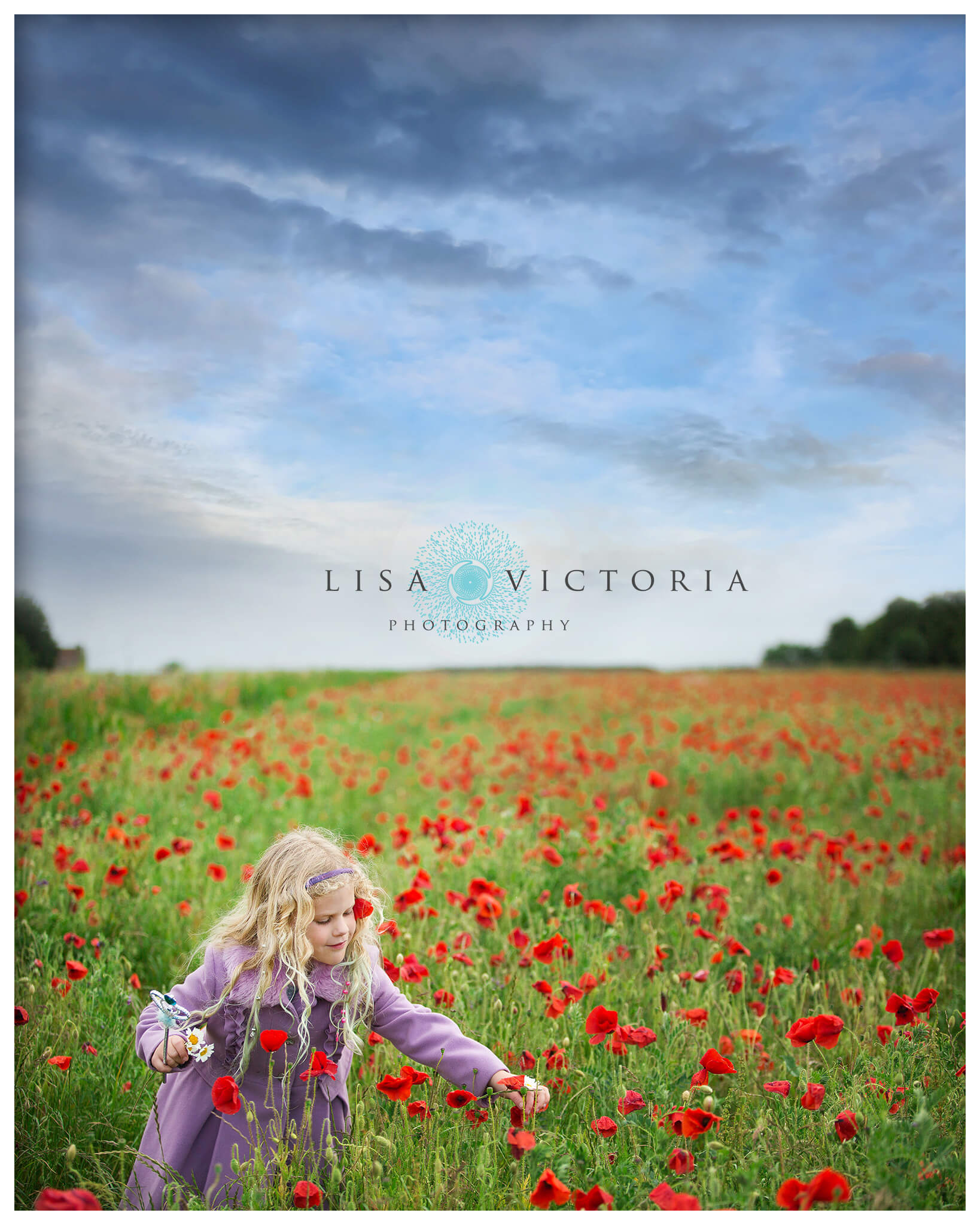 poppy field photoshoot child