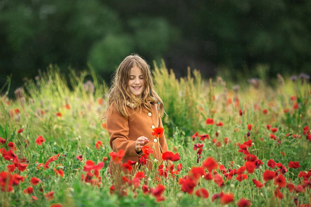 poppy field photoshoot family