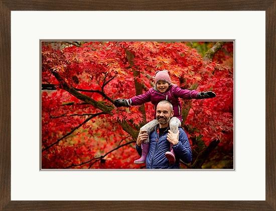 westonbirt arboretum professional photographer